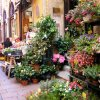Plant and flower markets are found everywhere