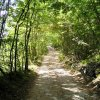 Beautiful trails, (sentieri), abound in our area.
